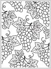 Darice Embossing Folder - Grapes