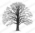 Impression Obsession Rubber Stamp - Small Bare Tree