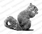 Impression Obsession Rubber Stamp - Squirrel Eating