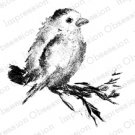 Impression Obsession Rubber Stamps - Bird