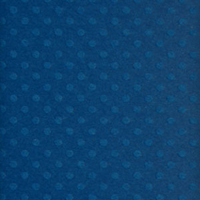 Bazzill Basics Dotted Swiss Cardstock 12X12 NEPTUNE