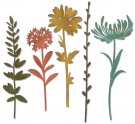 Sizzix Thinlits Die Set - Wildflower Stems #1 by Tim Holtz (5 dies)