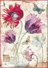 Stamperia A4 Rice Paper - Vintage Tulips