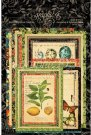 Graphic 45 Nature Sketchbook Ephemera Cards (32 pack)