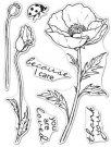 "Hero Arts 3""x4"" Clear Stamps - Hero Florals Poppy"