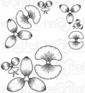 Heartfelt Creations - Botanic Orchid Pre-Cut Cling Mounted Stamp Set (3 stamps)