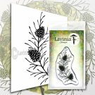 Lavinia Stamps Clear Stamps - Fir Cone Branch