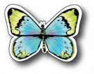 Memory Box Dies - Cocoa Bean Butterfly