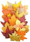 Prima Amber Moon Leaves - Scarlett (24 pack)