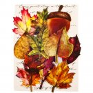 Prima Marketing Fabric Leaves - Fall Pine (12 pack)