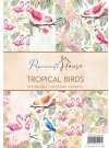Wild Rose Sudio A4 Paper Pack - Tropical Birds (40 sheets)