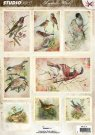 Studio Light Romantic Birds A4 die-cut sheet #47