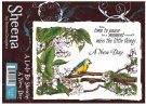 A Little Bit Sketchy Stamp Set - A New Day by Sheena Douglass