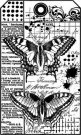 Stamperia Cling Mounted Natural Rubber Stamps - Butterfly