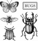 Stamperia Cling Mounted Natural Rubber Stamps - Bugs