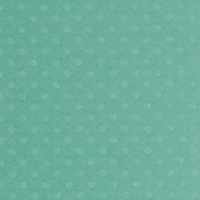 Bazzill Basics Dotted Swiss Cardstock 12X12 TAHITIAN P'CES