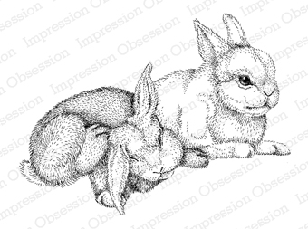 Impression Obsession Cling Rubber Stamps - Two Bunnies