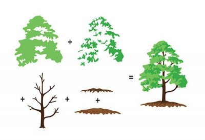 Hobby Solution 3D Clear Stamps - Trees